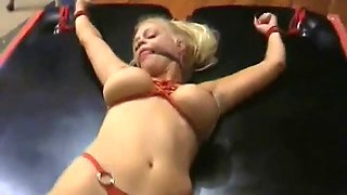 Euro babe loves being dominated