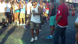 Trinidad and tobago carnival 2015 fantasy 1
