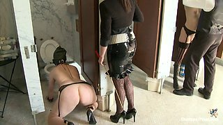 Ultimate Domination with Submissive Chicks