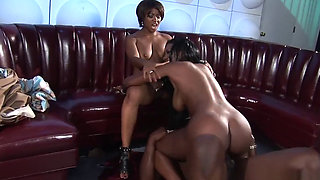 African Queens Subdue King Cock
