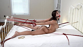 Busty naked brunette tied and vibed on bed